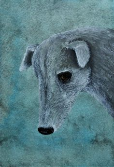 Galgo by Deborah Sheehy (from The Making of Many Painted Creatures)