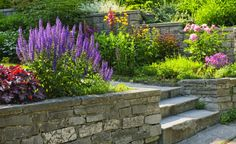 Perfekt Hanggarten: Drei Tolle Lösungen