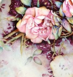 Rose close up painted on China by Mark Jones