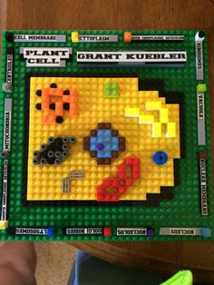 Animal cell made of Legos.