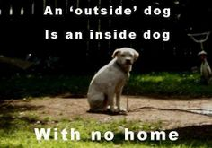 Hate it when ppl do this!! It is nothing less than animal abuse.  Dogs are pack animals.  We are their pack.  They want to be with us.  Inside!!!!!!!!!!