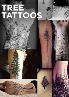 This year, nature tattoos became stark and refined.Queen Anne's lace back tattoo | side boob fir tree | forearm trunk detail | large back tattoo | forearm tree with birds | forearm abstract tree | palm tree | winter forearm scene