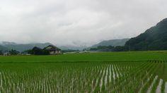 美しい日本
