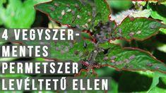 Tv, Garden, Youtube, Movie Posters, Garten, Television Set, Lawn And Garden, Film Poster, Gardens