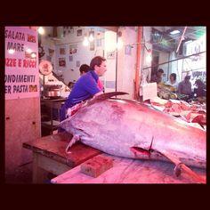 Tonno al mercato di Ballaro'