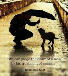 You can judge the heart of a man by his treatment of animals - Immanuel Kant. Thanks to @ROXANNAHALBRYT for this.