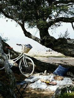A bike ride & picnic. A perfect Sunday!