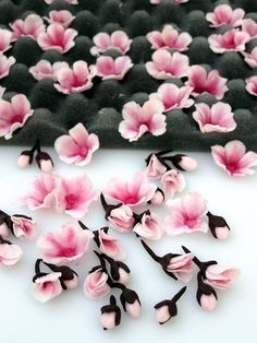 Tutorial for Cherry blossoms from modeling fondant or gumpaste