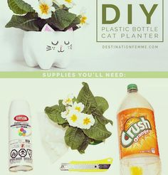 When life hands you empty 2-liter bottles you make adorable #DIY Kitten planters  #Lexington #Louisville #Kentucky #Sustainability #CatsOfInsta #CatLover #catoftheday #Gardening #Resourceful #UseWhatYouHave #Reduce #Reuse #planters #GoingGreen Re-post by Hold With Hope