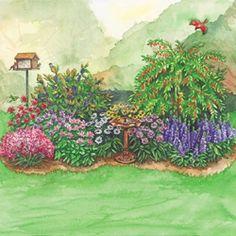 Bird Sanctuary garden -  Goji Berry   Aronia Berry   Blue Cardinal Flower (C - 3)  Coneflower Mix*  Purple Love Grass  Bee Balm Mix