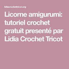 Licorne amigurumi: tutoriel crochet gratuit presenté par Lidia Crochet Tricot