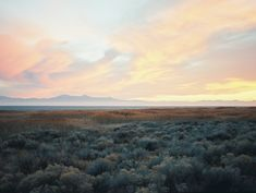 Antelope Island State Park, Utah byTrent Davis : expressions-of-nature