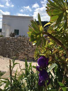 Fianco a Fianco Vacation www.fiancoafianco.eu