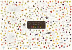 1   Infographic: Over 300 Fruits On One Mouthwatering Map   Co.Design: business + innovation + design