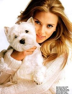 Cute Dogs - Scarlett Johansson and her Westie. Scarlett Johansson, Westies, Westie Dog, Celebrity Dogs, Celebrity Crush, Famous Dogs, Famous People, Famous Women, West Highland Terrier