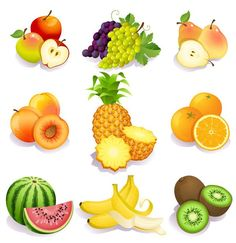 A lot of fruits vector material