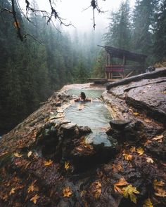 Mona Mayhue Umpqua Hot Springs at the Tokatee Lake Campground, in Oregon. Oh The Places You'll Go, Places To Visit, Dark Places, Umpqua Hot Springs, Camping Sauvage, Destination Voyage, Camping World, Camping Gear, Camping Places