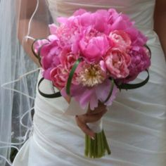 Peonies  Connie J Moore Floral Design
