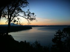 #find a #madronna tree and watch a #puget#sound #sunset