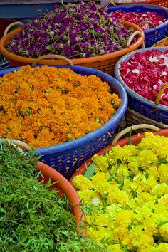 Basketful of flowers, via Flickr. Kochi, Kerala, IN - By jensvins