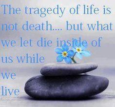 keep it alive...life