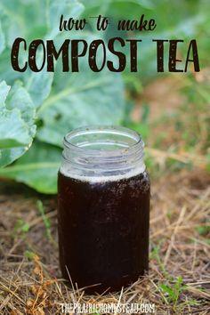 homemade compost tea recipe