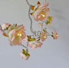 Peaches and Cream Longer Wild Roses Fairy Lights by PamelaAngus, €25.00. Love this