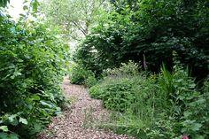 Fann Street Wildlife Garden, UK