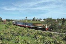 The train from Saigon to Phan Thiet will also come into operation. Let's discover its itinerary as well as its convenience. Travel Guide, Train, House Styles, Ho Chi, Countries, Norte, Trains