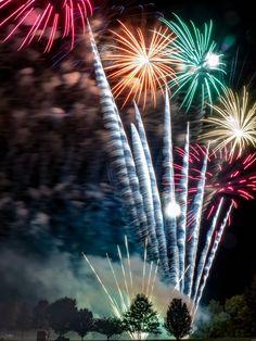 Fire Works, Dandelion, Fair Grounds, Flowers, Plants, Travel, Viajes, Dandelions, Destinations