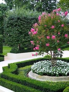 8 Astonishing Useful Tips: Large Backyard Garden Grass backyard garden layout retaining walls.Backyard Garden Ideas On A Budget backyard garden ideas on a budget. Formal Garden Design, Boxwood Garden, Cottage Garden, Backyard Landscaping, Gorgeous Gardens, Outdoor Gardens, Hedges, Dream Garden, Garden Planning