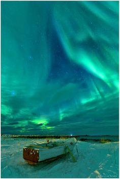 Auroras - Lofoten, Northern Norway