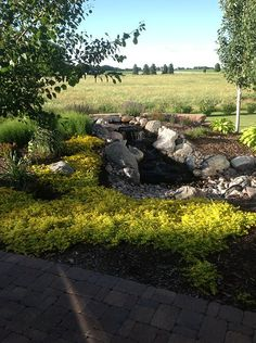Get Pure Elements at Del's Garden Center in Spencer, IA!