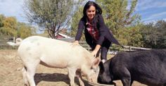 Tracey & Jon Stewart - lovely people at their animal Rescue Farm   The Kind Life