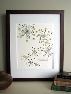 Pressed flower print, 11x14 double matted, Queen Annes Lace wildflowers botanical, wall decor no. 0014