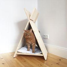 """""""Der Mann hat ein Tipi für die Katzen gebaut   #diy #dermannhatgebaut #katzenhaus #miezhaus #woodworker #cathome #catfurniture #diycatfurniture #interior…"""""""