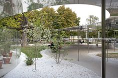 serpentine pavilion 2009 sanaa