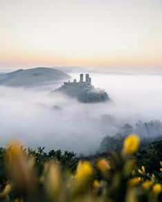 """Historic Architecture & Ruins on Instagram: """"#EPIC_CASTLES challenge HOW WOULD YOU LIKE TO BE FEATURED ACROSS 20 PAGES?!!! . Your favourite UK/European/Worldwide Hubs have joined up…"""" Corfe Castle, William The Conqueror, Historical Architecture, Somerset, Monument Valley, Britain, Challenges, England, Construction"""