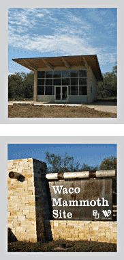 Waco Mammoth Site in Waco, TX