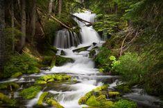 5 Beautiful Waterfalls of the Pacific Northwest | Photofocus