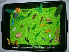 Little Learners: Dinosaur Sensory Tub