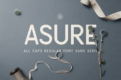 Asure - all caps sans serif font. It's clean and universal. Best for logos, branding or heading.$9