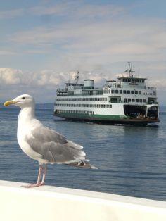 The Pier-Seattle