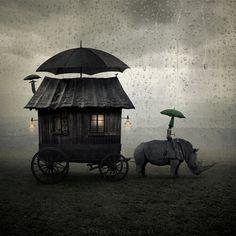 Journey  By Leszek Bujnowski