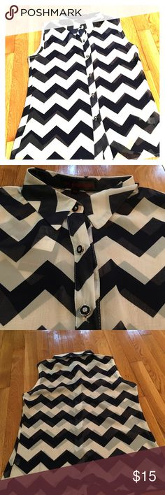 Sheer blouse Sheer button down blouse. Brand new, never worn Tops Blouses