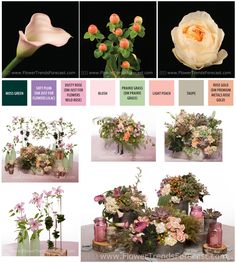 The Modern Garden look balances modern and vintage and the flowers include garden blossoms of roses, clematis and stock combined with succulents and lamb's ear foliage.  Earthy but romantic with traditional shades of blush and peach.