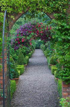 Wow, look at that arch laden with clematis blooms! Clive Nichols Photography
