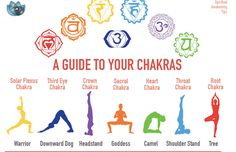 Have you ever wondered why our seven major chakras are represented by the colours of the rainbow? When I first began learning about the chakra colours, I thought that the colours assigned to each one was just someone's way of labeling them and making them easy for us to