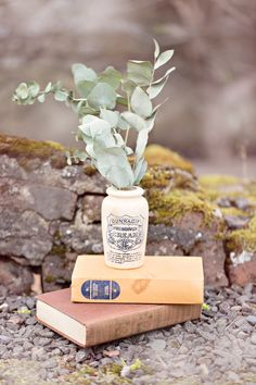 greenery with vintage books + jar // photo by Glass Jar Photography