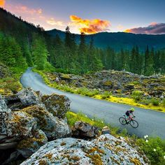 Cycling Mt Hood Oregon. One ofmy husband's favorite things to do biking.